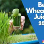 Best Wheatgrass Juicers 2021