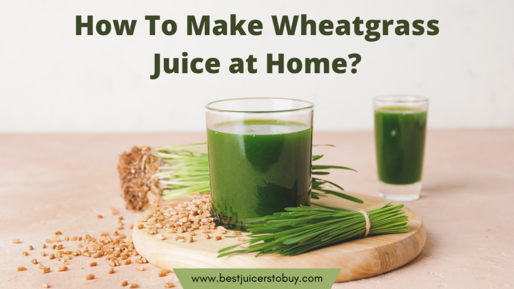 How To Make Wheatgrass Juice at Home?