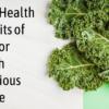 Top 7 Health Benefits Of Kale